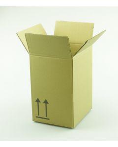 Versandkarton für 10 Liter Kunststoff Kanister